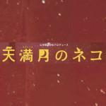 牧佳子・高嶺ともき「天満月のネコ」